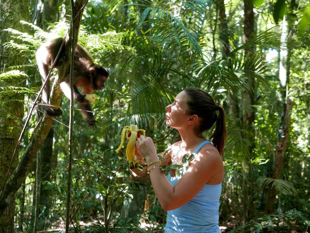 Кормим обезьян, Корковадо, Бразилия