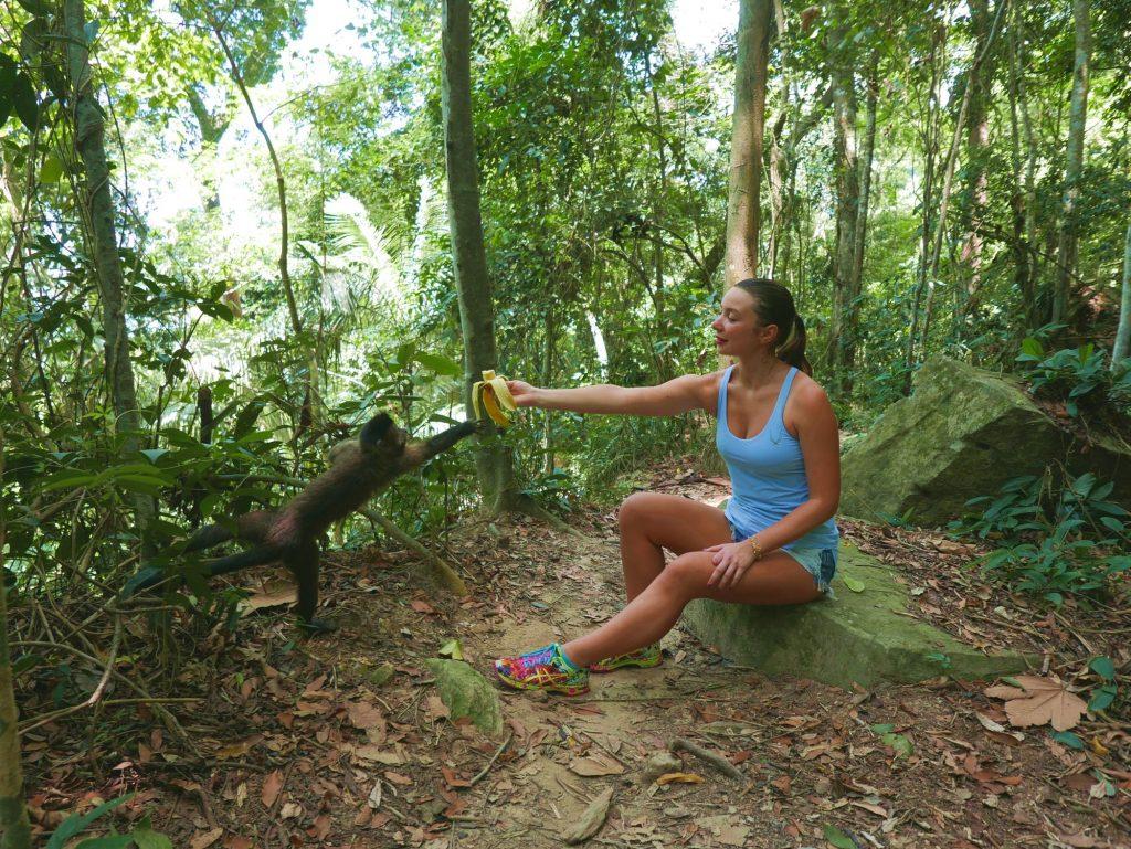 На первом привале кормим обезьян у подножья Корковадо